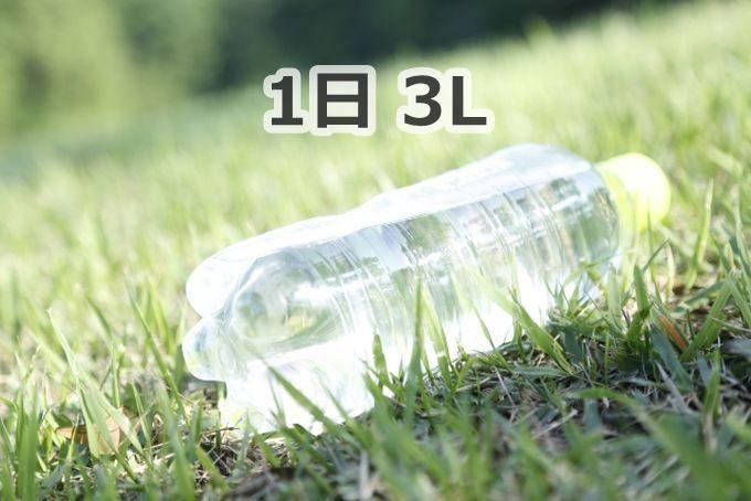 人間に必要な水の量は1日3L